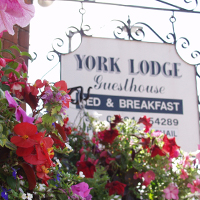 York Lodge Guest House York